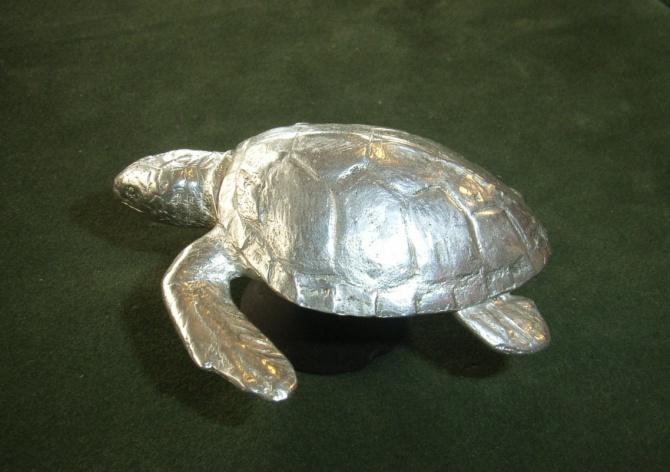 Stříbrná želva - 2. foto